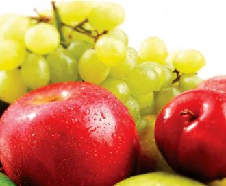 despegue de la fruticultura en el Biobío