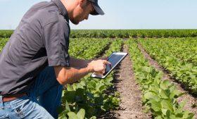Información Agroclimática