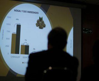 Disponible resultados del Catastro Frutícola Región Metropolitana