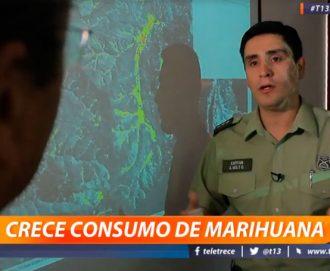 Tecnología satelital apoya a Carabineros en detección de cultivos de marihuana