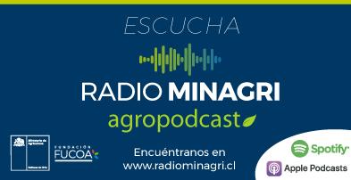 banner2-ciren-radio