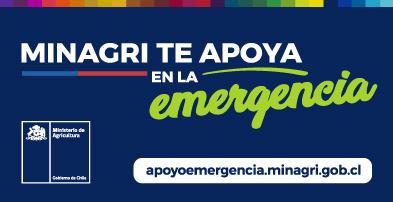 banners-emergencia-ciren2